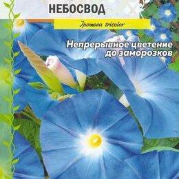 Рассада, саженцы, кустарники, деревья - Ипомея Небосвод (Семена Алтая), 0