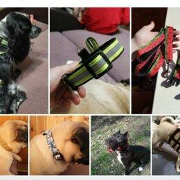 Прочие товары для животных - Амуниция для животных на заказ , 0