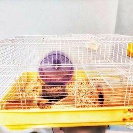 Клетки и домики  - Клетка для хомяка, 0