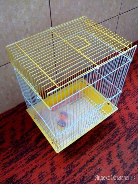 Клетка для птиц Petmax по цене 1000₽ - Клетки и домики, фото 0