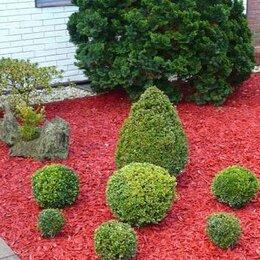Садовые дорожки и покрытия - Красная щепа в ландшафтном дизайне, 0