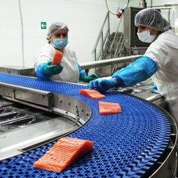 Фасовщики - Фасовщик на производство морепродуктов (вахта), 0