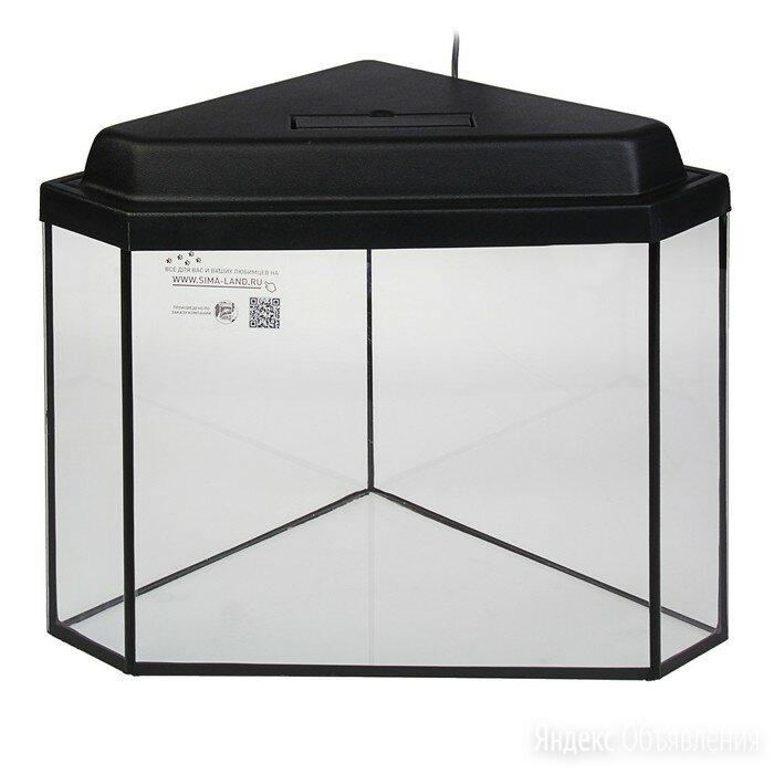 Аквариум дельта угловой с крышкой, 40 литров, 39 х 39 х 36/41,5 см, чёрный по цене 4279₽ - Аквариумы, террариумы, тумбы, фото 0