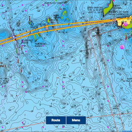 Эхолоты и комплектующие - Карта глубин Navionics Gold Россия, 0