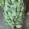 Банные веники,береза,липа,дуб по цене 80₽ - Аксессуары, фото 2