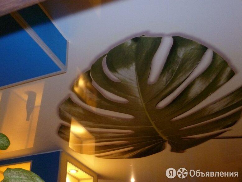 Натяжной Потолок по цене 300₽ - Потолки и комплектующие, фото 0