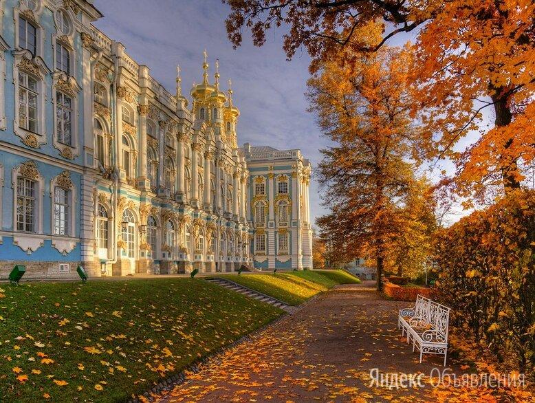 Тур в Санкт-Петербург по цене 19100₽ - Экскурсии и туристические услуги, фото 0