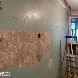 Архитектура, строительство и ремонт - Снять старую краску со стен, 0