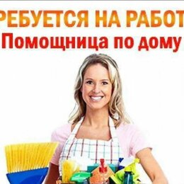 Бытовые услуги - Домработница, 0