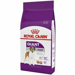 Корма  - Royal Canin Giant Adult, 0