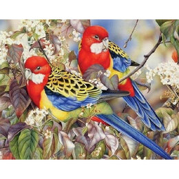 Игрушки-антистресс - Пара попугайчиков Артикул : GF 4961, 0