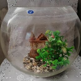 Аквариумы, террариумы, тумбы - Аквариум на 12 литров , 0