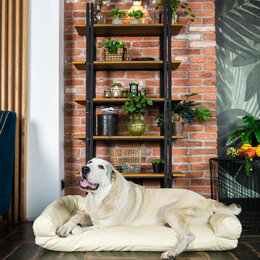 Лежаки, домики, спальные места - Лежанки для животных , 0