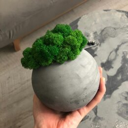 Горшки, подставки для цветов - Кашпо бетон & мох, 0