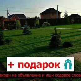 Газоны - Рулонный газон Премиум, 0