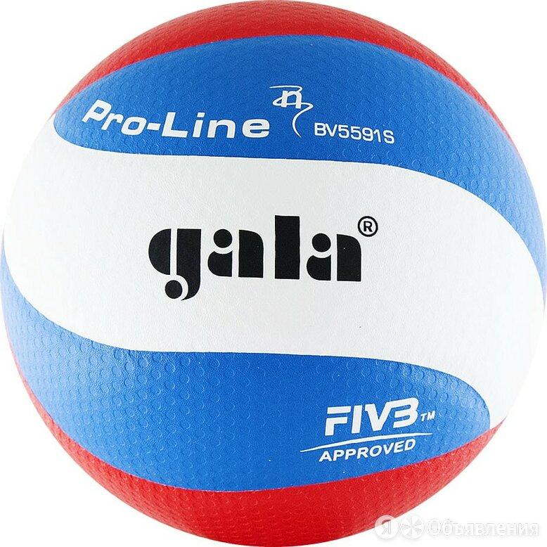 """GALA Мяч вол. """"GALA Pro-Line 10 FIVB"""" арт.BV5591S, р. 5,FIVB Appr,синт.к. ПУ ... по цене 4400₽ - Защита и экипировка, фото 0"""