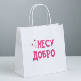 Подарочная упаковка - Пакет подарочный «Несу добро», 22 × 22 × 11 см    3907850, 0