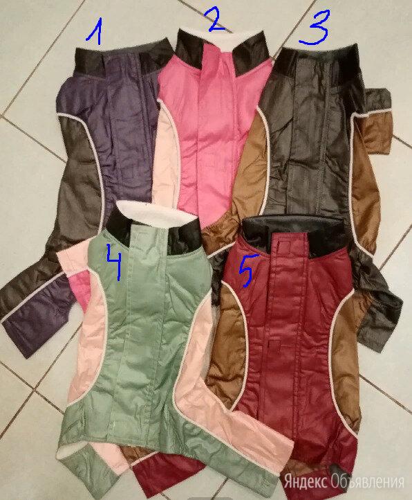 Утеплённый дождевик для собаки по цене 850₽ - Одежда и обувь, фото 0