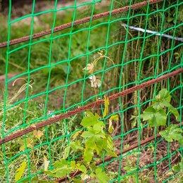 Заборчики, сетки и бордюрные ленты - Сетка для винограда, 0
