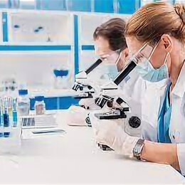 Специалисты - Лаборант на пищевое производство, 0