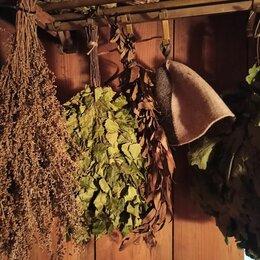 Аксессуары - Веники для бани, травы, 0