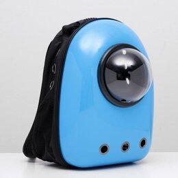 Товары для сельскохозяйственных животных - Рюкзак для переноски животных с окном для обзора, 32 х 22 х 43 см, голубой, 0