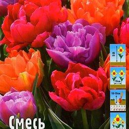Луковичные растения - Тюльпан махровый ранний Смесь, 0