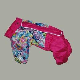 Одежда и обувь - дождевик для собаки с закрытым животом для девочки, 0