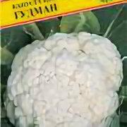 Семена - Капуста цветная Гудман F1 (Престиж), 0