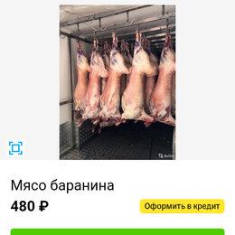 Продукты - Малодое мяса баранина и курдюк, 0