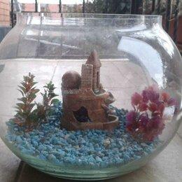 Аквариумы, террариумы, тумбы - Круглый аквариум 18,5л, 0