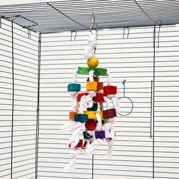 Игрушки и декор  - Игрушка для птиц 'Круговорот', 36 см, микс цветов, 0