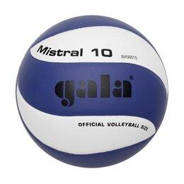 Мячи - Мяч волейбольный GALA Mistral 10 тренировочный клееный (PU) BV 5661 S Сине-белый, 0