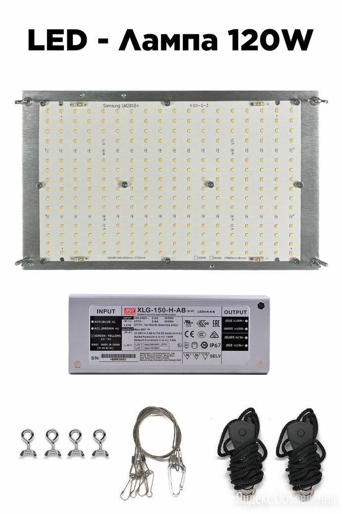 Led лампа для растений 120W по цене 8000₽ - Аксессуары и средства для ухода за растениями, фото 0