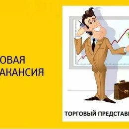 Торговые представители - Торговый представитель г. Кызыл , 0