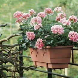 Горшки, подставки для цветов - Балконный ящик для цветов с автополивом 75 см, 0
