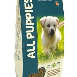 Корма  - Сухой полнорационный корм для собак , 0