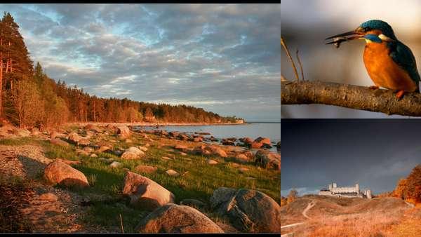 Природа Эстонии осенью