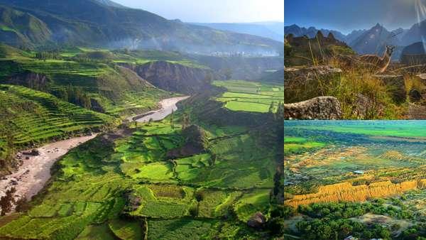 Завораживающая  природа Перу