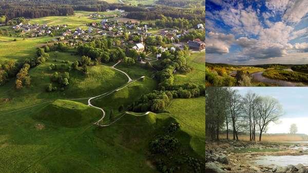 Природа Литвы: флора