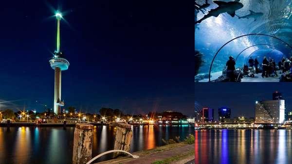 Что посмотреть в Роттердаме