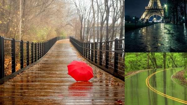 Фотографии природы: дождь