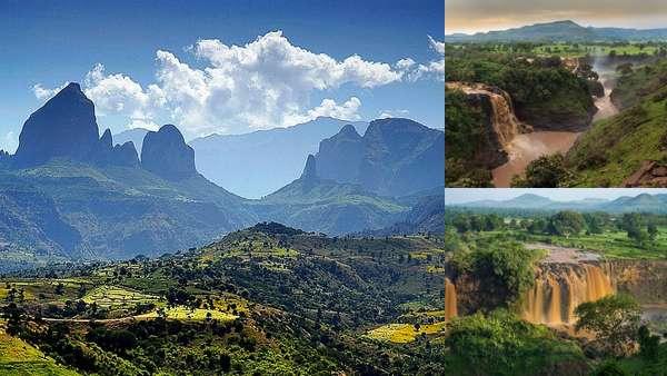 Дикая природа Эфиопии