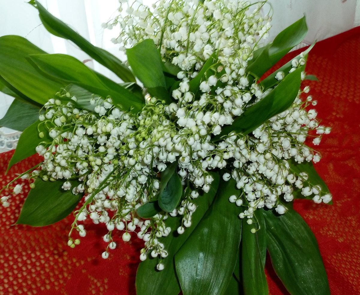 Мерцающие открытки букетов цветов и поздравлением можно