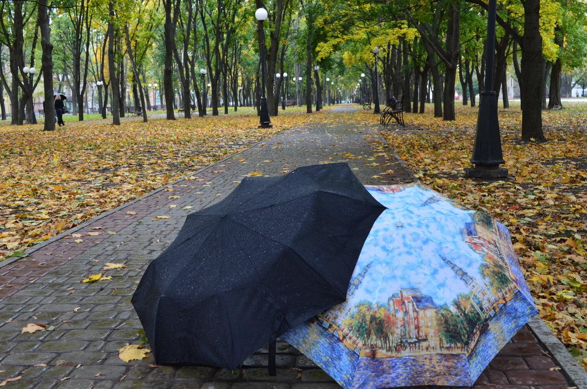 Картинки осенние зонты