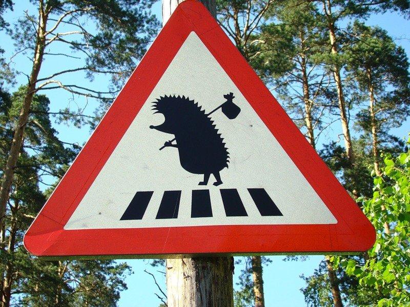 Россия, картинки смешные знаки дорожного движения