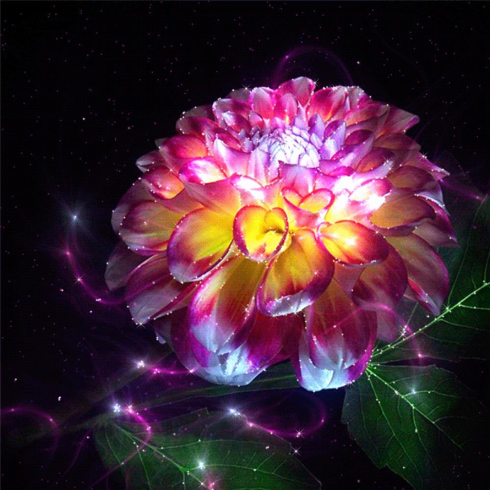 Работники, очень красивые картинки анимации цветов