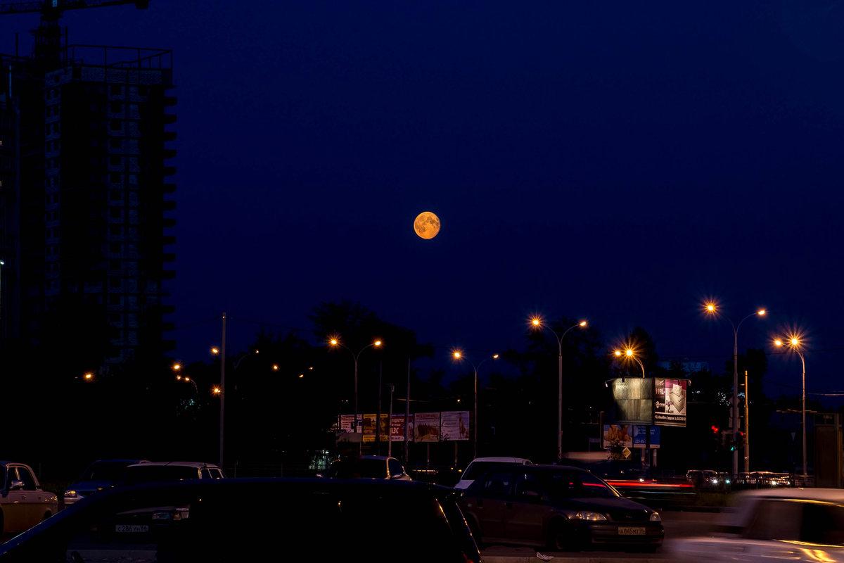 обжаренным кальмарам луна сейчас фото в екатеринбурге муай тай