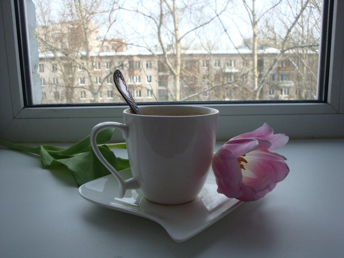 чашка кофе с добрым утром картинки весна нужно