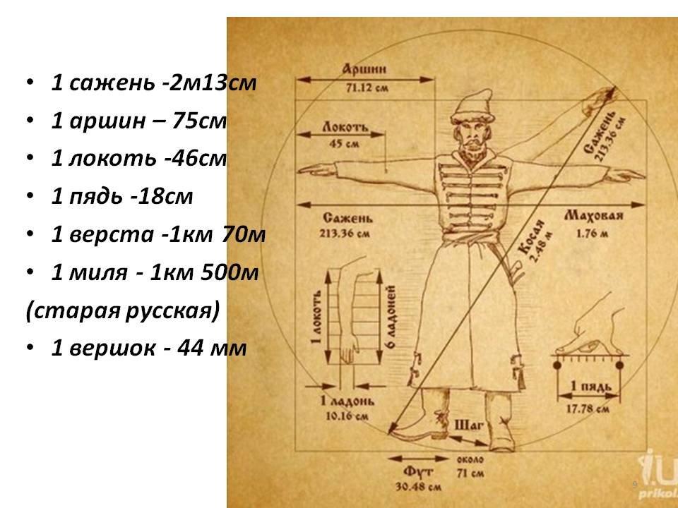 местным северным картинки как раньше измеряли длину пестролистное